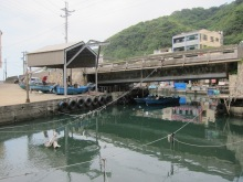 鼻頭漁港 Bitou Fishing Port