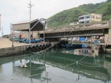 鼻頭漁港 Bitou Fishing Port
